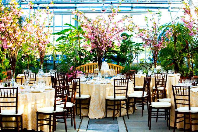 roger williams botanical garden wedding botanical gardens roger williams park ri cozy caterers